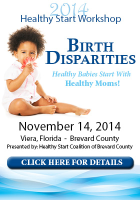 Healthy Start Workshop 2014 Birth Disparity